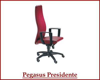 pegasus-presidente